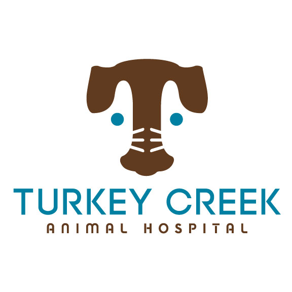 Turkey Creek Animal Hospital Affordable Veterinary Care